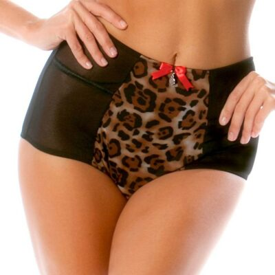 Parfait Leslie High Waist Brief Panty 6551