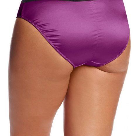 Par_Charlotte_Bikini-Brief_6905_Purple_B